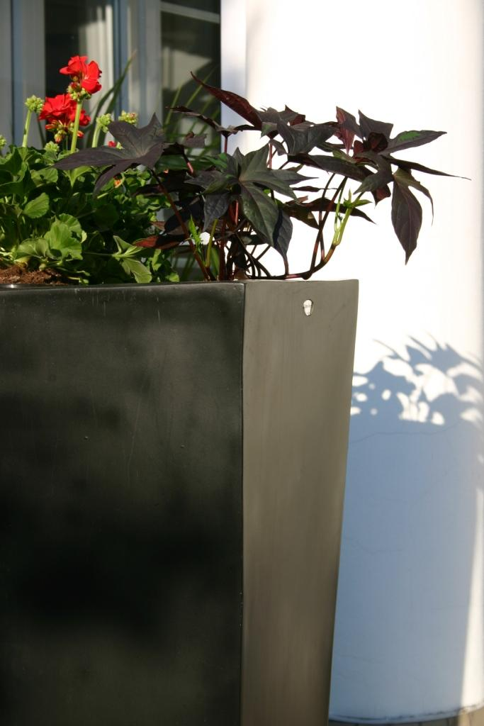 Donica SKYE Planter. Black Fibre Glass. Willow House
