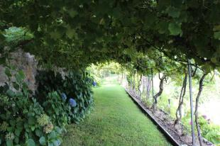 Villa Paradiso Cannero Riviera. Garden.
